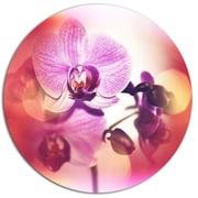 DesignArt 'Beautiful Pink Orchid Flowers' Photographic Print on Metal; 11'' H x 11'' W x 1'' D