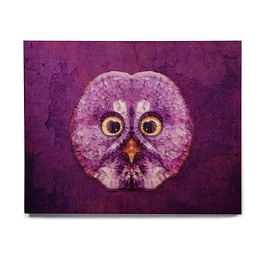East Urban Home Owl 'Hoot!' Graphic Art Print on Wood; 11'' H x 14'' W x 1'' D