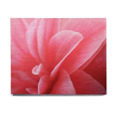 East Urban Home 'Camellia' Graphic Art Print on Wood; 11'' H x 14'' W x 1'' D