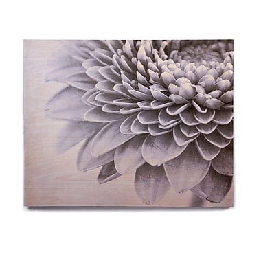 East Urban Home Petals 'A Flower' Graphic Art Print on Wood; 20'' H x 24'' W x 1'' D