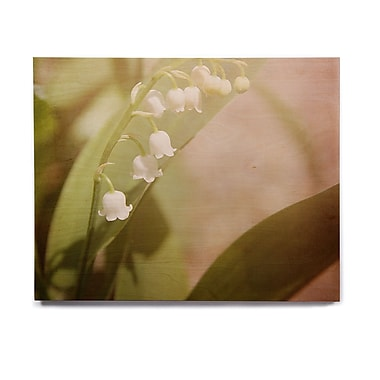East Urban Home 'Lily Of The Valley' Graphic Art Print on Wood; 20'' H x 24'' W x 1'' D
