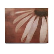 East Urban Home Flower 'Copper and Pale Pink' Graphic Art Print on Wood; 16'' H x 20'' W x 1'' D