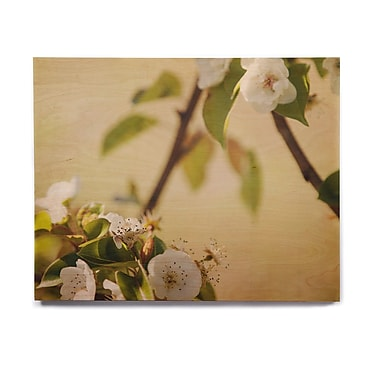 East Urban Home 'Pear Blossom' Graphic Art Print on Wood; 16'' H x 20'' W x 1'' D
