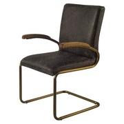 Gracie Oaks Irvington Cantilever Chair