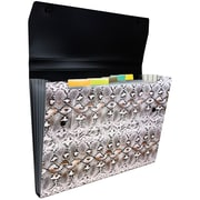 JAM Paper® 6 Pocket Expanding File with Snap Closure, Letter, 9 x 13, Snakeskin, Sold Individually (21632818)