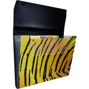 JAM Paper® 6 Pocket Expanding File with Snap Closure, Letter, 9 x 13, Tiger stripe, Sold Individually (21632817)