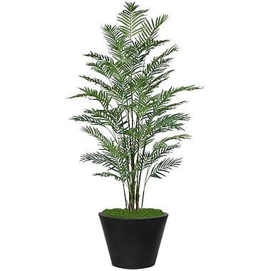 Bayou Breeze Cylinder Palm Tree in Planter; Black