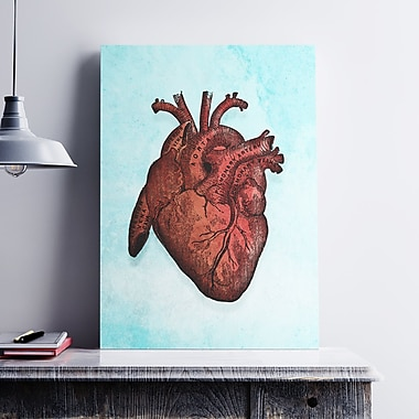 Ebern Designs 'Heart Anatomy' Graphic Art Print on Paper Canvas; 19'' H x 13'' W x 0.1'' D