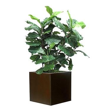 Brayden Studio Artificial Fiddle Leaf Foliage Plant in Planter; Brown