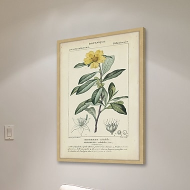 Gracie Oaks 'Botanique Study in Yellow I' Framed Graphic Art Print; 36'' H x 24'' W x 1.5'' D