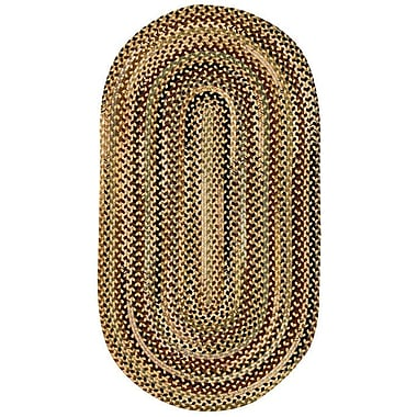 Loon Peak Fort Lupton Amber Area Rug; Concentric 2'3'' x 4'