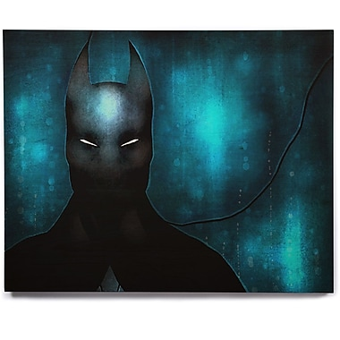 KESS InHouse 'Dark Knight' Graphic Art Print on Wood; 20'' H x 24'' W x 1'' D