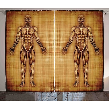 Ambesonne Human Anatomy Graphic Print & Text Semi-Sheer Rod Pocket Curtain Panels (Set of 2)