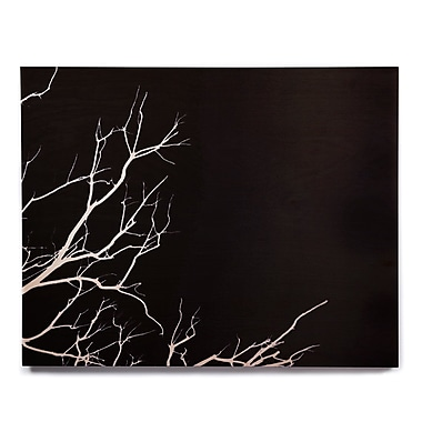 East Urban Home 'Winter Black' Graphic Art Print on Wood; 16'' H x 20'' W x 1'' D
