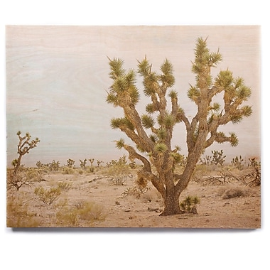 East Urban Home 'Joshua Tree' Photographic Print on Wood; 8'' H x 10'' W x 1'' D