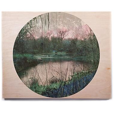East Urban Home 'Swamp' Graphic Art Print on Wood; 16'' H x 20'' W x 1'' D
