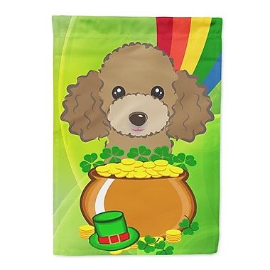 Caroline's Treasures St. Patrick's Day 2-Sided Garden Flag; Poodle 1