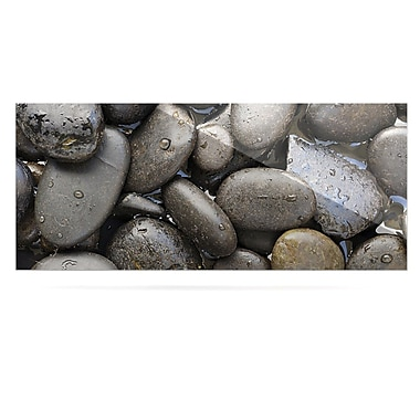 East Urban Home Rocks 'Skipping Stone' Photographic Print on Metal; 16'' H x 20'' W x 1'' D
