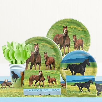 Creative Converting 81 Piece Wild Horses Birthday Paper/Plastic Tableware Set WYF078281158288