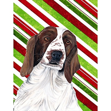 Caroline's Treasures Candy Cane Holiday Christmas House Vertical Flag; Welsh Springer Spaniel