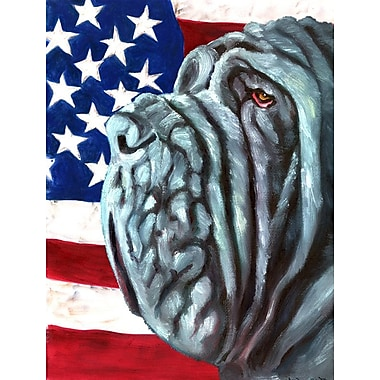 Caroline's Treasures American Flag 2-Sided Garden Flag; Neapolitan Mastiff