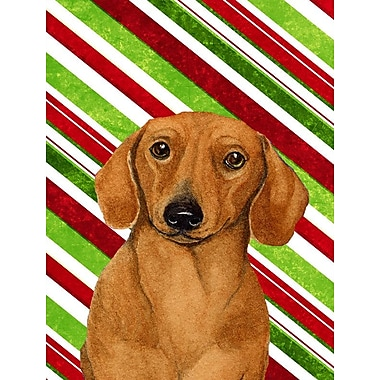 Caroline's Treasures Candy Cane Holiday Christmas House Vertical Flag; Dachshund 4