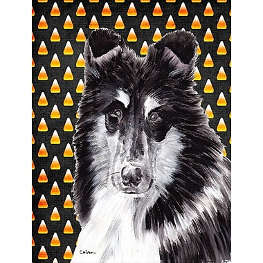 East Urban Home Candy Corn Halloween 2-Sided Garden Flag; Black and White Collie