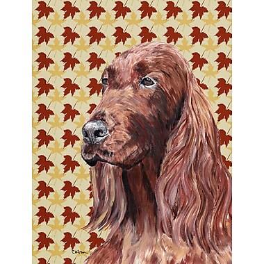 Caroline's Treasures Fall Leaves 2-Sided Garden Flag; Irish Setter Dog (Brown)