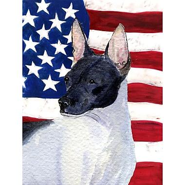 Caroline's Treasures American Flag 2-Sided Garden Flag; Rat Terrier