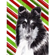 Caroline's Treasures Candy Cane Christmas House Vertical Flag; Black and White Collie