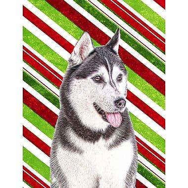 Caroline's Treasures Candy Cane Holiday Christmas House Vertical Flag; Alaskan (White & Gray)