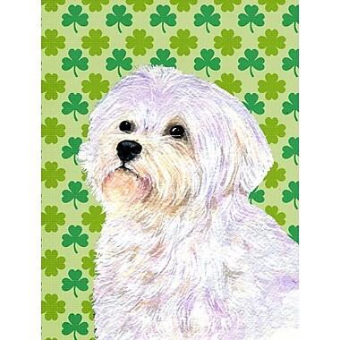 East Urban Home St. Patrick's Day Shamrock 2-Sided Garden Flag; maltese 1