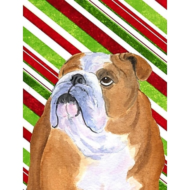 Caroline's Treasures Candy Cane Holiday Christmas House Vertical Flag; Bulldog (White & Orange)