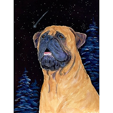 Caroline's Treasures 2-Sided Garden Flag; Bullmastiff