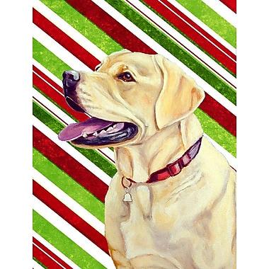 Caroline's Treasures Candy Cane Holiday Christmas House Vertical Flag; Labrador 1