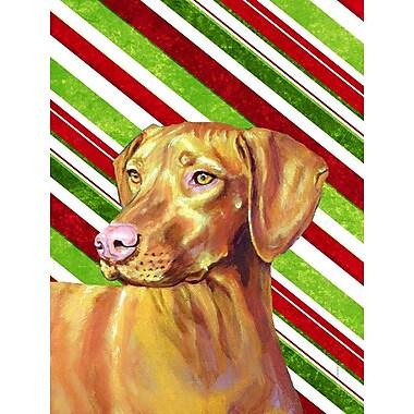 Caroline's Treasures Candy Cane Holiday Christmas House Vertical Flag; Vizsla (Tan & Brown)