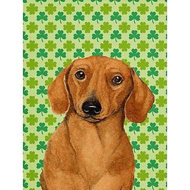 Caroline's Treasures St. Patrick's Day Shamrock House Vertical Flag; Dachshund 5