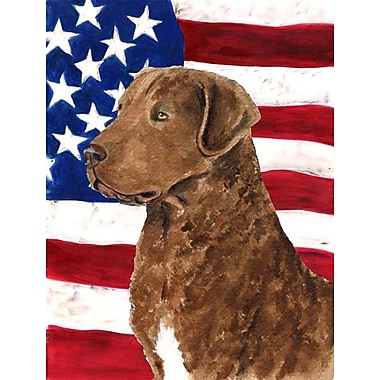 Caroline's Treasures USA American House Vertical Flag; Curly Coated Retriever
