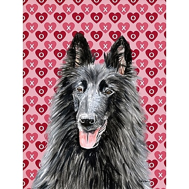 Caroline's Treasures Hearts Love and Valentine's Day 2-Sided Garden Flag; Belgian Sheepdog