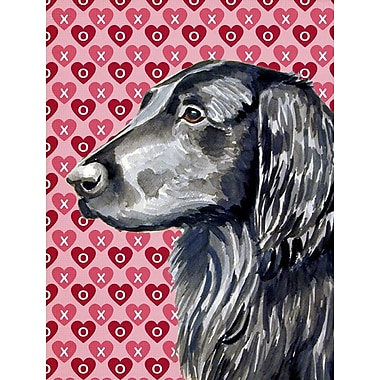 Caroline's Treasures Hearts Love and Valentine's Day 2-Sided Garden Flag; Flat Coated Retriever