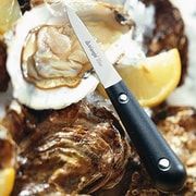 Triangle Oyster Knife
