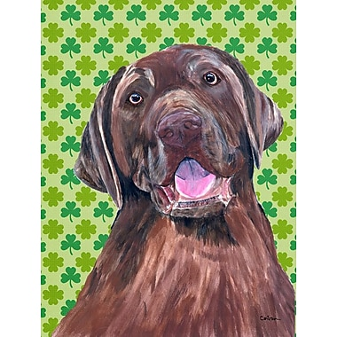 Caroline's Treasures St. Patrick's Day Shamrock House Vertical Flag; Labrador 4
