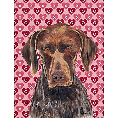 Caroline's Treasures Hearts Love and Valentine's Day 2-Sided Garden Flag; german shorthaired pointer