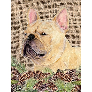 Caroline's Treasures House Vertical Flag; French Bulldog (Beige)