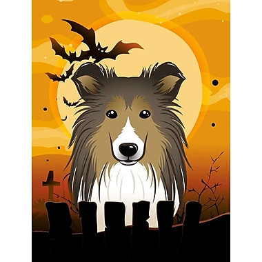 Caroline's Treasures Halloween 2-Sided Garden Flag; Sheltie