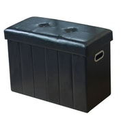 Winston Porter Lindsey Collapsible Storage Ottoman
