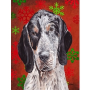 The Holiday Aisle Snowflakes Christmas House Vertical Flag; Coonhound (Black & Gray)