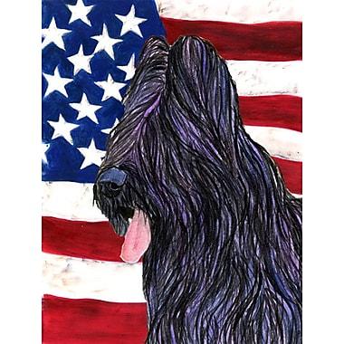 Caroline's Treasures USA American House Vertical Flag; Briard