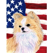 Caroline's Treasures American Flag 2-Sided Garden Flag; Chihuahua 3