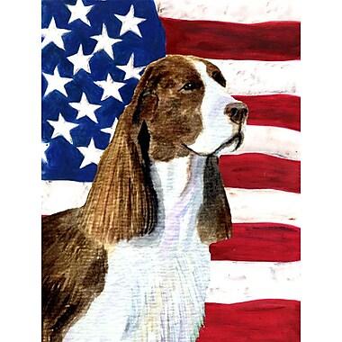 Caroline's Treasures American Flag 2-Sided Garden Flag; Springer Spaniel (Brown & White)